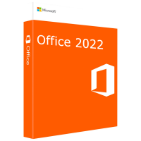Microsoft Office Professional Plus 2022